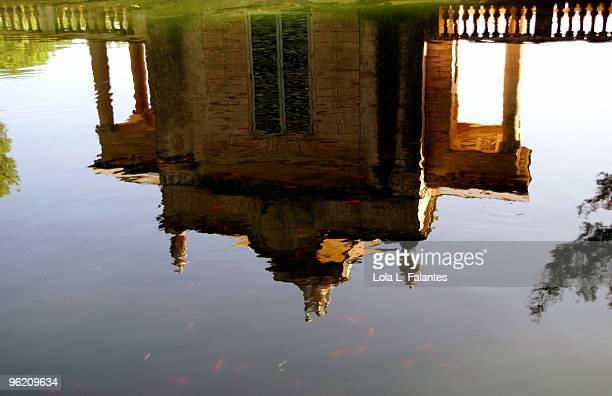 Reflection on a pond