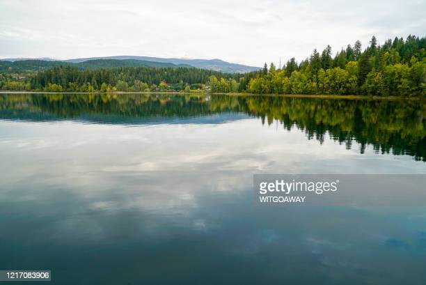 reflection on the lake at dutch lake, british columbia, canada - lago reflection foto e immagini stock