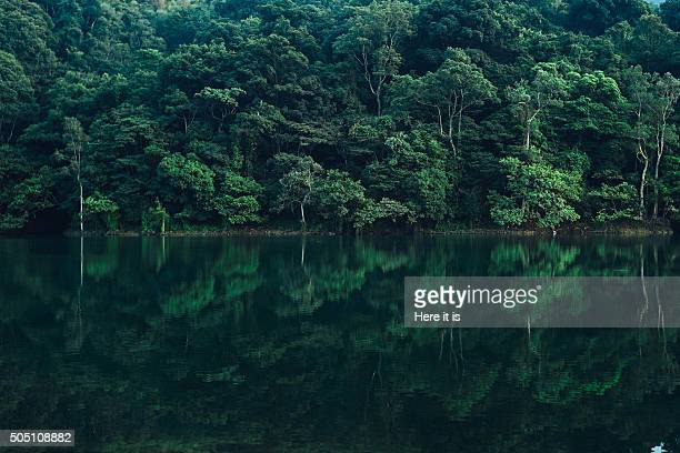 reflection on the shing mun reservoir - reservoir stock pictures, royalty-free photos & images