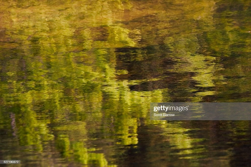 Reflection on water : Foto stock