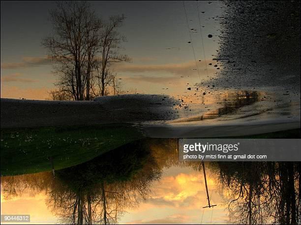 reflection - lexington kentucky stock pictures, royalty-free photos & images