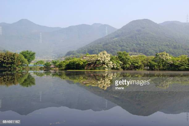 Reflection Scenery on the Lake