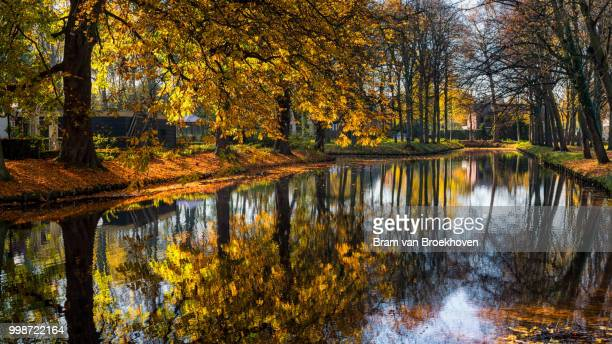 Reflections and autumn colors