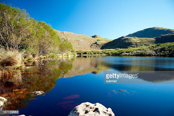 reflections at reservoir - western cape province stock pictures, royalty-free photos & images