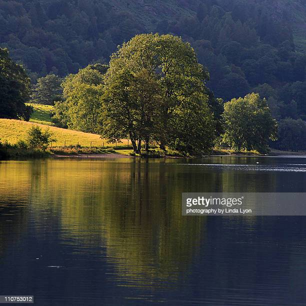 Reflections Grasmere