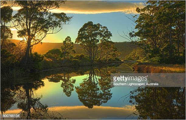 Reflections in a small coastal lagoon at Adventure bay, South Bruny Island, Tasmania.