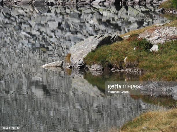Reflections in Alpine Lake Lago di Agro in The High Bognanco Valley