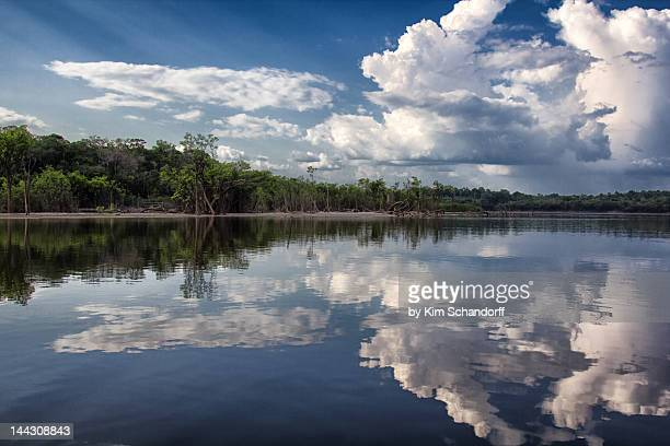 Reflections in Amazon river