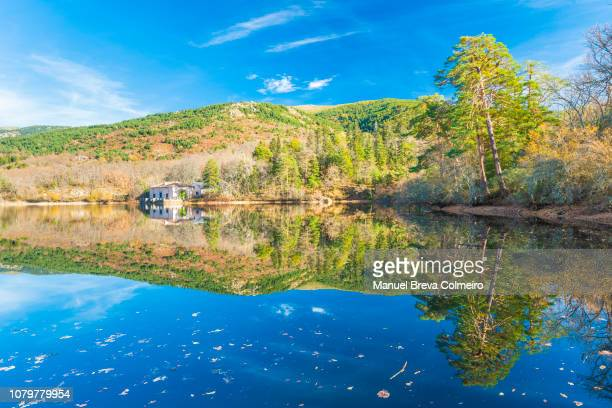 reflections in la granja de san ildefonso - segovia stock pictures, royalty-free photos & images