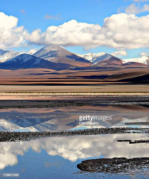 Reflections in Laguna Grande