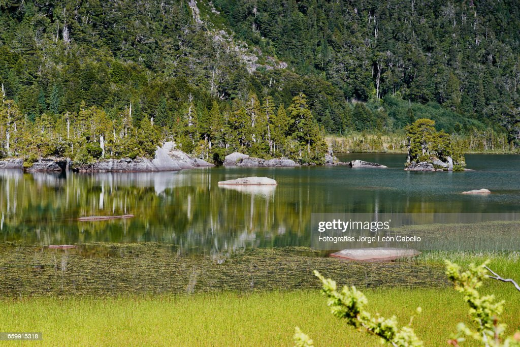 Reflections in Lake Quetrus : Stock Photo