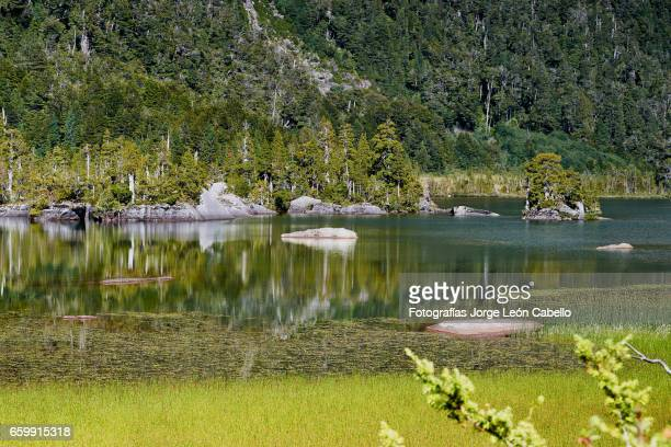 Reflections in Lake Quetrus