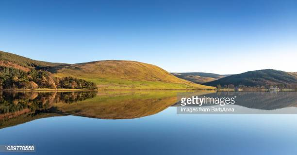 reflections in  st. mary's loch, the borders, scotland, uk - reflection lake stock photos and pictures