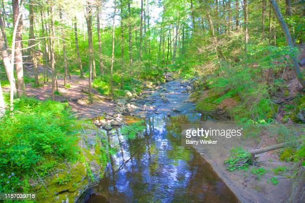 reflections in water in kent, ct - barry wood stock pictures, royalty-free photos & images