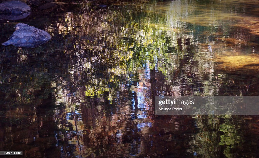 Reflections in water : Stock Photo