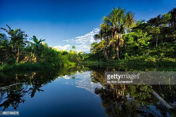 Reflections of Peru