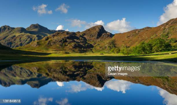 reflections of the langdales in blea tarn in the english lake district, uk - cumbria stock pictures, royalty-free photos & images
