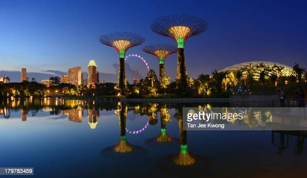 Reflections of the Supertrees and city skyline at Dragonfly Lake , Gardens By The Bay