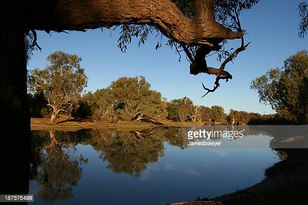 Reflections of trees and sky on a calmly flowing river