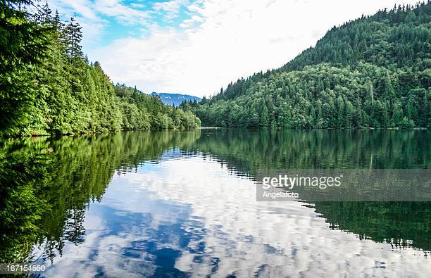 Reflections on Alice Lake