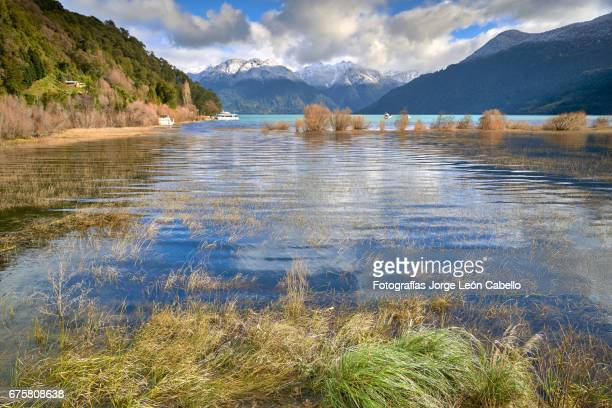 reflections on the waters of lake todos los santos in a winter day with grass on the foreground in peulla. - azul turquesa stockfoto's en -beelden