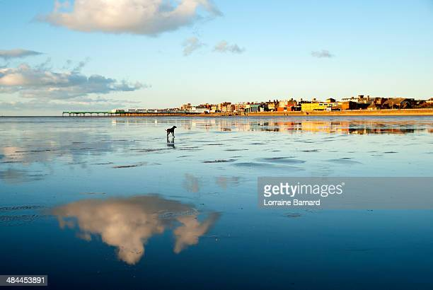 reflections on wet st annes beach - lytham st. annes stock photos and pictures
