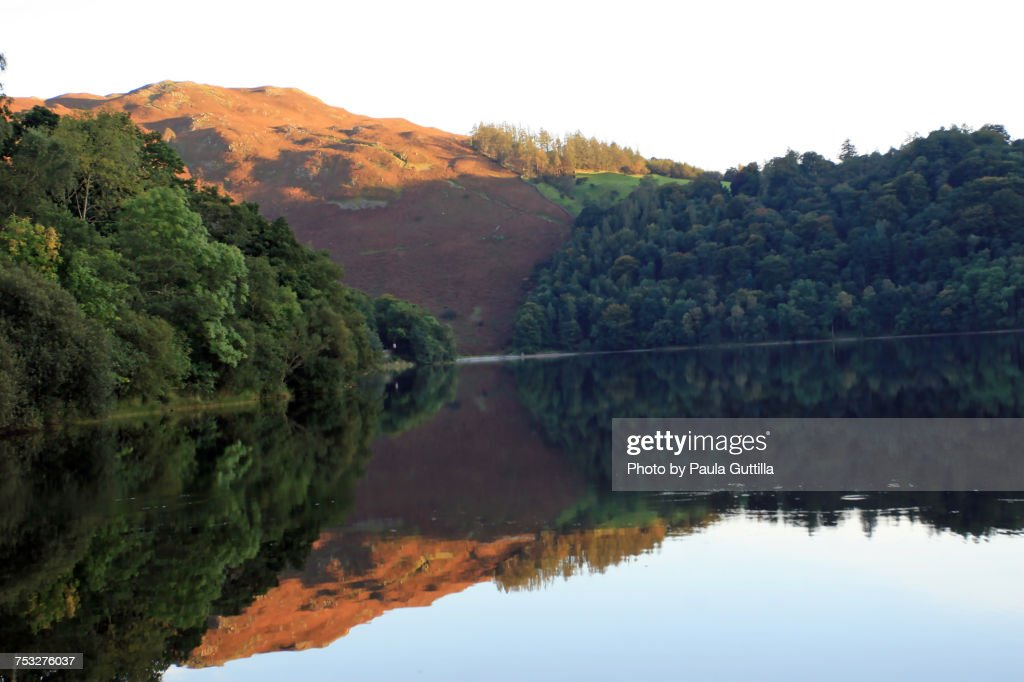 Reflections : Stock Photo