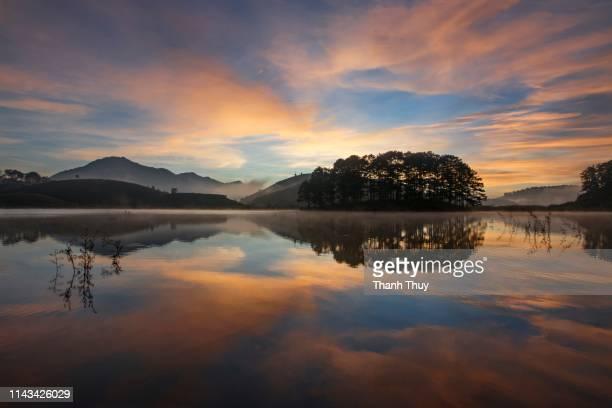reflective trees on the lake - new zealand fotografías e imágenes de stock