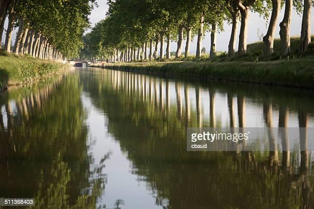 Reflet sur canal du Midi