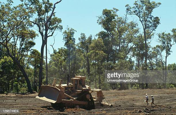 Reforestation Australia Western Australia Darling Range Jarrahdale Mine Vicinity Perth Reforestation Of Bauxite Mines By Alcoa Of Australia Mined...