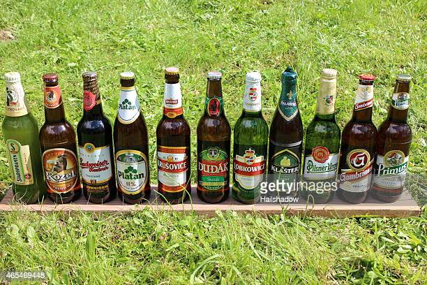 Refreshing Czech Beer in Summer Time