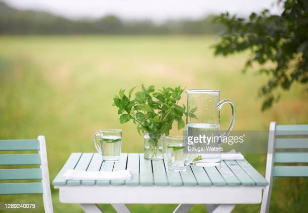 refreshing drink and fresh mint on garden table in countryside. - mint leaf culinary stock pictures, royalty-free photos & images