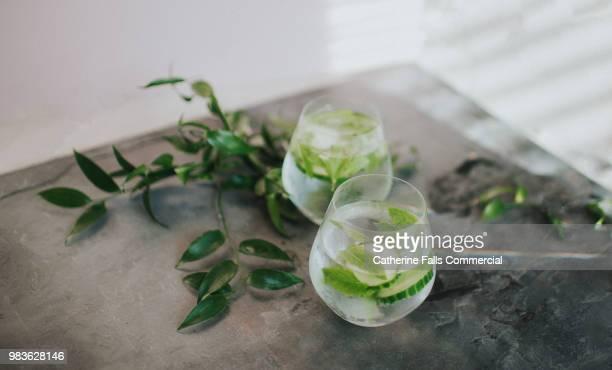 refreshing glass of water or gin and tonic - gurke stock-fotos und bilder