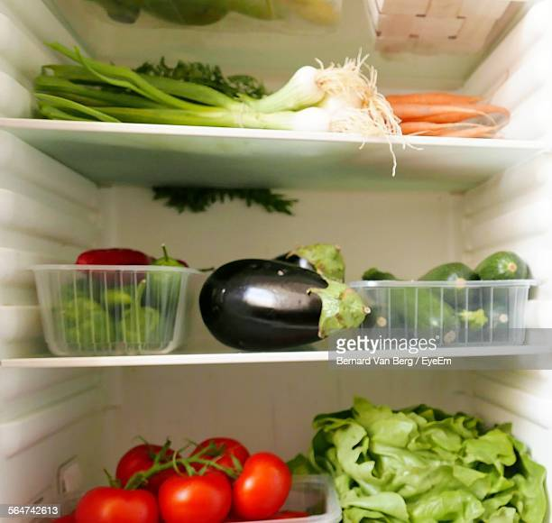 Refrigerator Filled With Vegetables And Fruits