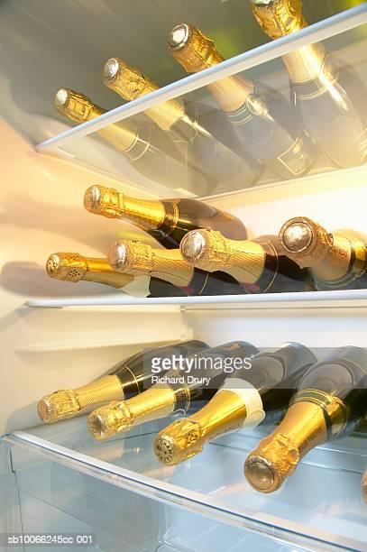 Refrigerator full of champagne bottles