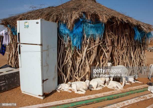 Refrigerator in front of a traditional tihama hut, Jizan Region, Jizan, Saudi Arabia on January 15, 2010 in Jizan, Saudi Arabia.