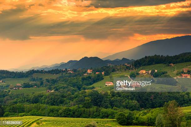 refrontolo - the prosecco hills at sunset - veneto stock pictures, royalty-free photos & images