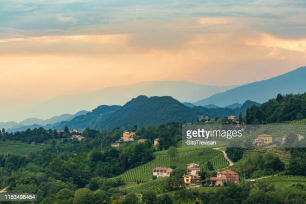 refrontolo - the prosecco hills - veneto stock pictures, royalty-free photos & images