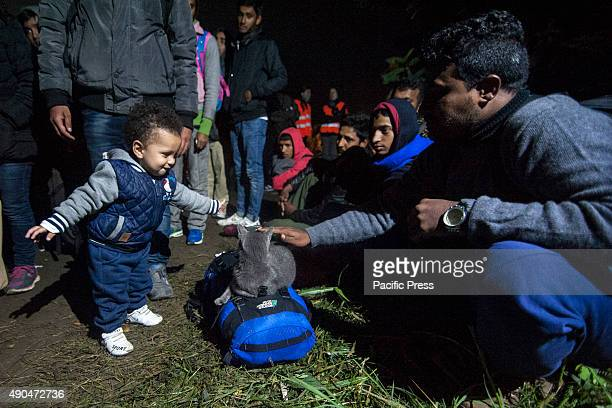 BORDER BAPSKA SYRMIA CROATIA A refugee and his baby playing with a cat waiting to cross the Croatian border at night Desperate migrants continue...