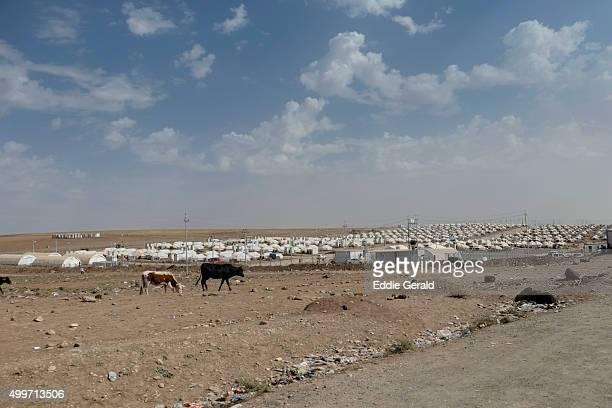 Refugee camp near Dohuk Iraq