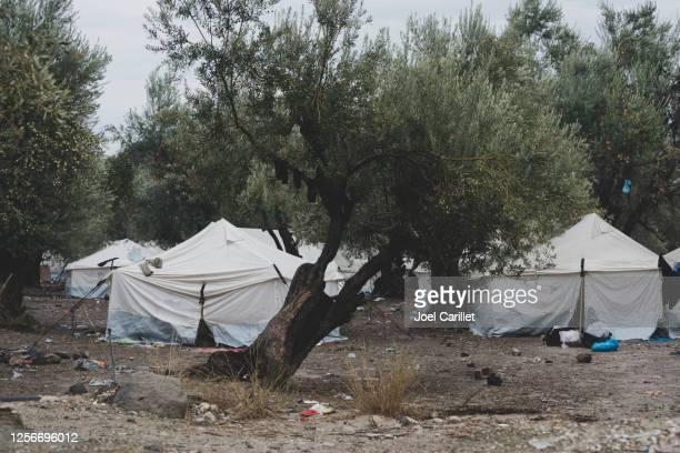 flyktingläger på lesbos, grekland - flyktingläger bildbanksfoton och bilder