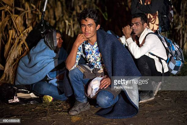 BORDER BAPSKA SYRMIA CROATIA Refugee waiting to be able to cross the SerbianCroatian border at night Desperate migrants continue their journey to...