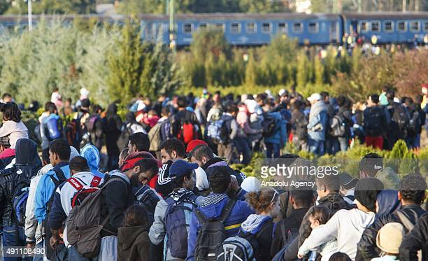Refugees arrive et the HungarianCroatian border near the village of Zakany Hungary on October 02 2015
