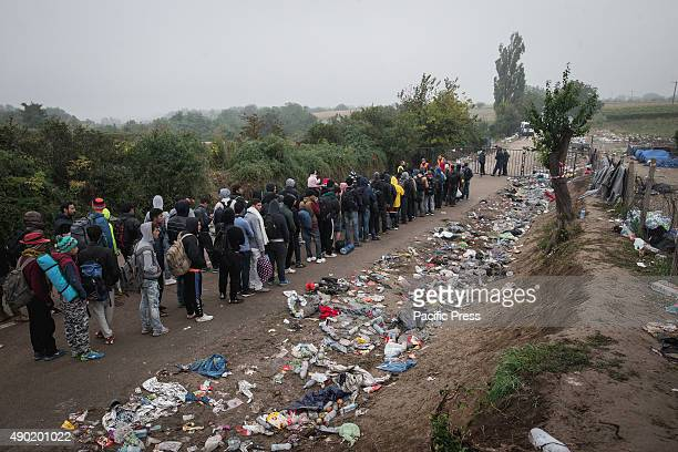 Refugees arrive to cross the SerbianCroatian border at the refugee camp of Bapska Millions of refugees flee from their countries to seek asylum from...
