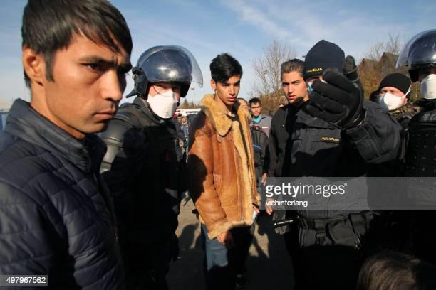 profughi al confine con la slovenia-austria, 19 novembre 2015 - iraq foto e immagini stock
