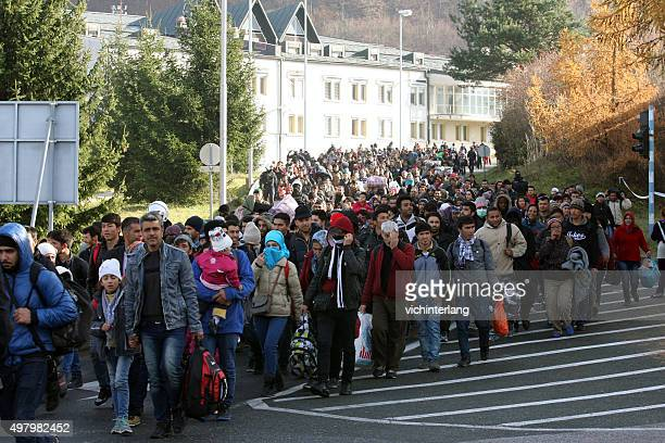 refugees at slovenia - austria border, november 19, 2015 - syria stock pictures, royalty-free photos & images