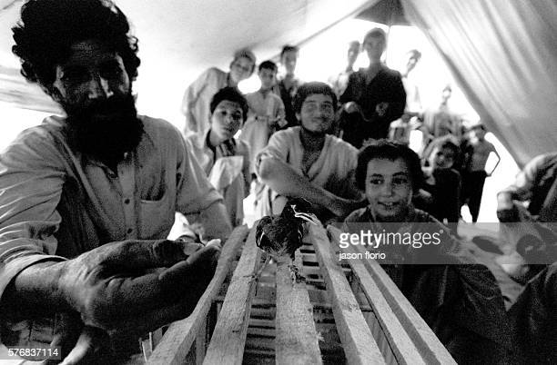 Refugees in New Jalozai camp