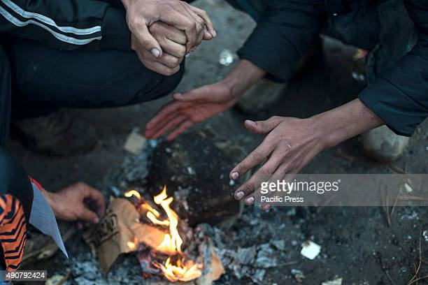 Refugees in the refugee camp of Belgrade in Park Luke elovia More migrants continue their journey to Europe to escape from their country's chaos