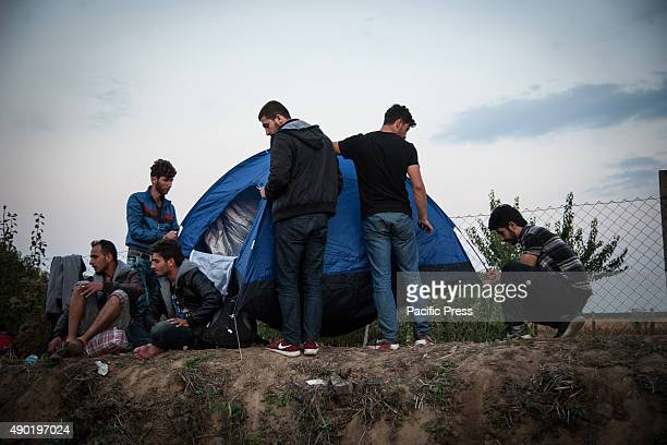 BORDER BAPSKA SYRMIA CROATIA Refugees mounting a tent before the night comes at the refugee camp of Bapska Migrants come to Europe for asylum and...