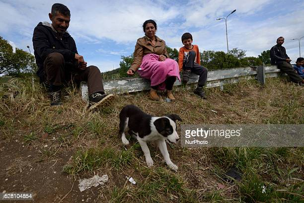 Refugees play with a puppy as they sit aside the highway at Hotel Hara makeshift refugee camp in the village of Evzoni seven kilometres south of the...